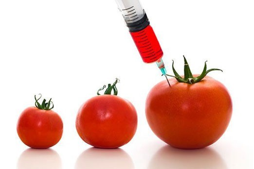 Is The Scope Of Being Food Technologist In India More Than In Usa Or
