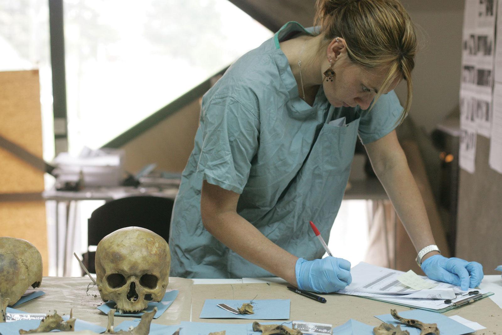 Forensic medical image of sex crimes